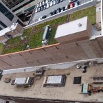 Green Roof on Commercial Urban Building